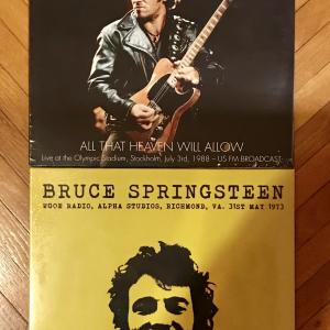 - Bruce Springsteen - Rarità in vinile in Edizione Limitata