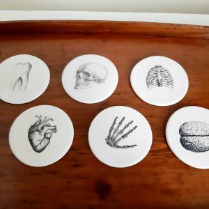 Set 6 Sottobicchieri in Ceramica Anatomia Umana