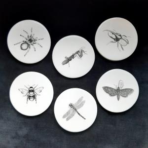 - Set 6 Sottobicchieri in Ceramica Insetti